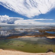 September 21-23 The Art of Landscape Photography – The Outer Cape w/ Ronald Wilson & Bob Bergeron