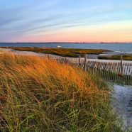 ArtWeek MA – Barnstable Harbor / Sandy Neck Art Experience