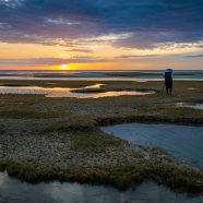 October 17-20 Cape Cod: Light on the Landscape w/ Mark Bowie