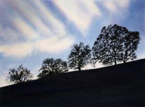 oak trees on a hill